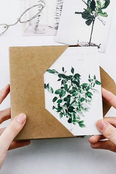 Green Plants Leaf Postcard Collection (30pc) | Greenhouse Post Cards Sets | Succulent Plants Postcard | Plant Cards | Houseplant Nature Card