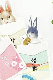Rabbit Postcards Collection (30pc) | Puppy Post Cards Set | Hand Drawing Hamster Post cards Box | Cute Postcards | Bunny Shaped Cards Set
